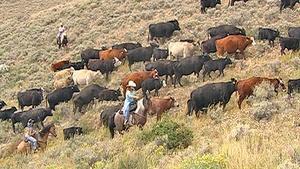 Family Ranch Heritage (Outdoor Idaho)