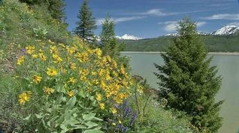 Palisades by Season (Outdoor Idaho)