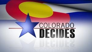 Colorado Decides 2014: 4th Congressional District