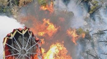 Colorado's Incredible Wildfire Season