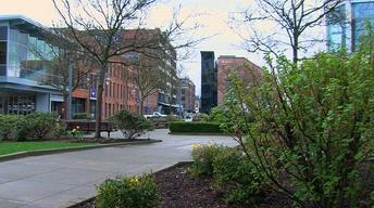 UWT - Reshaping Tacoma