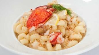 Cavatappi Lobster Mac & Cheese