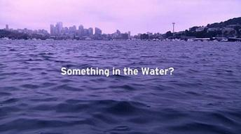 Something in the Water (Trailer)