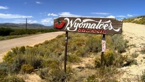 Farm to Fork Wyoming  - Wyomatoes