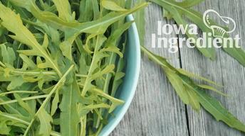 Arugula | Iowa Ingredient