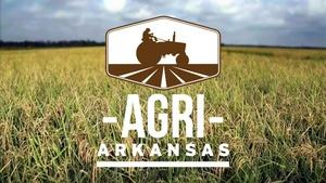 Agri Arkansas November 2016