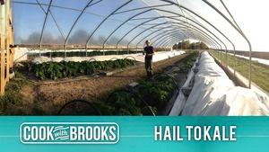 "Cook With Brooks ""Hail to Kale"""