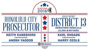 Honolulu City Prosecutor / State Senate District 13