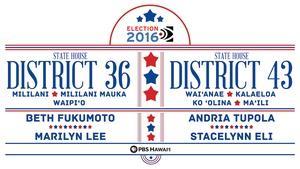 State House District 36 / State House District 43