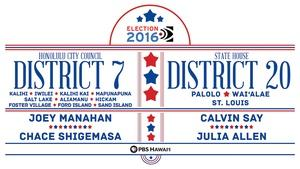 Honolulu City Council District 7 / State House District 20