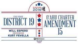 State Senate District 19 / O'ahu Charter Amendment 15