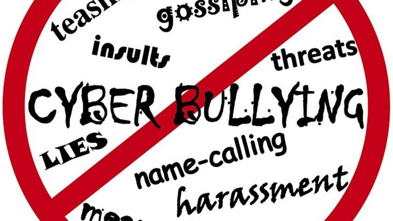 May 20, 2016 | Going after cyber bullies