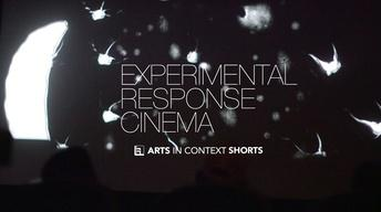 Experimental Response Cinema