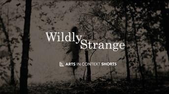 Wildly Strange