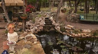 Make a Splash with Ponds