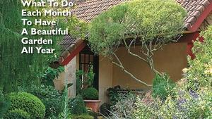 Top Tips for Your Garden