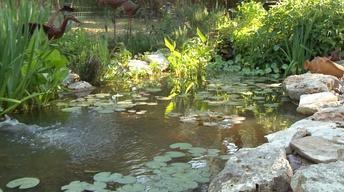 Ponds Big and Tiny