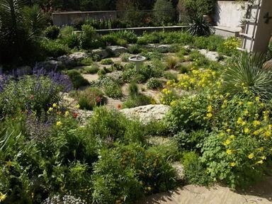 The Water-Saving Garden Video Thumbnail