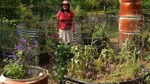 Healing, Helpful Plants