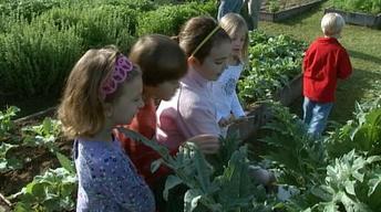 Sharon Lovejoy Children Garden Adventures