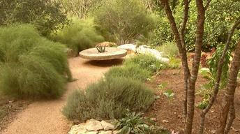 Drought Garden Balance