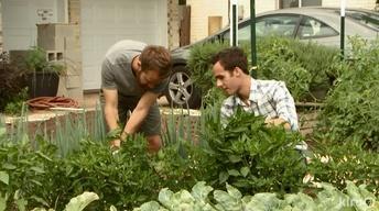 East Austin Farm Cultivates Sustainable Local Food