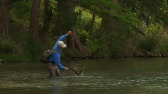Wild Artist, Rio Grande Rafting & Balmorhea Birds