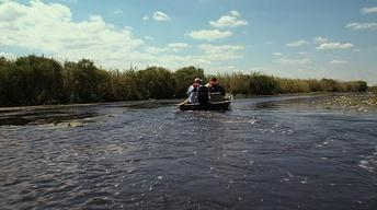Gator Hunt, Neches Refuge & the Ecotainer
