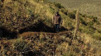El Paso Trails, Saving Some Bison & Shifting Sands