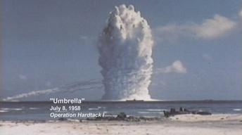 The Test | Umbrella