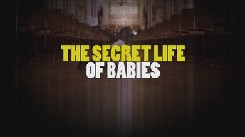 The Secret Life of Babies Promo
