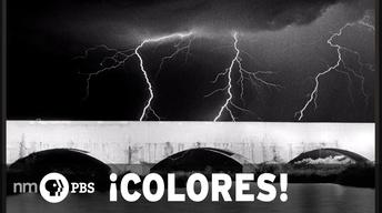 ¡COLORES! January 24, 2014
