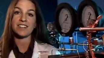 Dr. Michaelann Tartis
