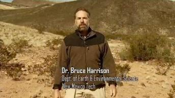 Dr. Bruce Harrison