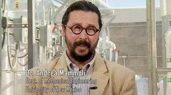 Dr. Andrea Mammoli