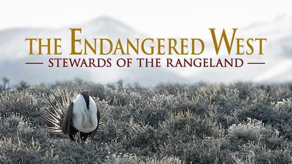 The Endangered West: Stewards of the Rangeland image