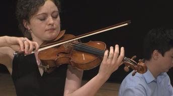Stradivarius Performance