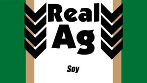 RealAg Soy (Ep 505)