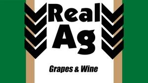 RealAg Grapes/Wine (Ep 506)