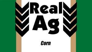 RealAg Corn (Ep 509)