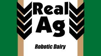 RealAg Robotic Dairy (Ep 602)