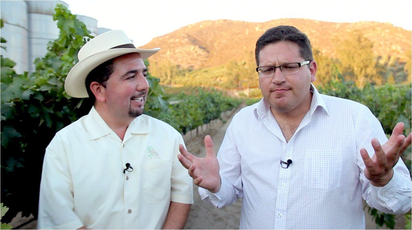 Valle De Guadalupe image