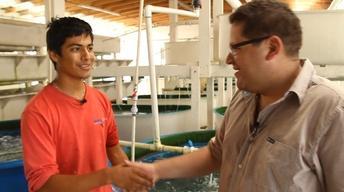 San Quintin Seafood Farming image