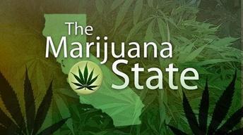 The Marijuana State