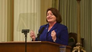 Roundtable On Toni Atkins, Navy Broadway, Poway Unified