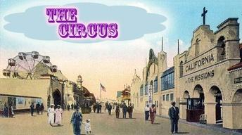 Circus and Amusement Parks