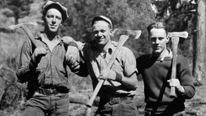 Oregon Finds: Logging's Living Past
