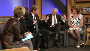 2nd District congressional debate, political scientist panel