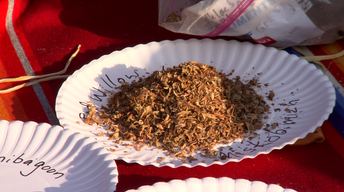 Traditional Tobacco & Promoting Health