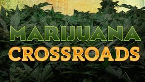 Marijuana Crossroads